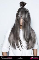 Kadeřník roku 2015: Kolorista roku (Jan Hlaváček – Hairthusiasts)