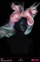 Kadeřník roku 2015: Kolorista roku (Dominik Mikulčák –Salon Michal Zapoměl)