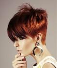 007-cervene-vlasy-barevne-ucesy-barva-krve