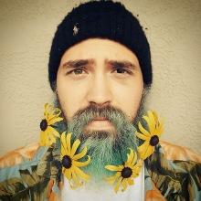 012-rozkvetle-brady-bradky