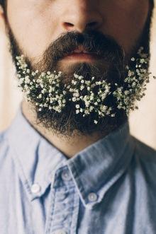 021-rozkvetle-brady-bradky