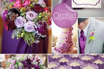 Barevná svatba podzim/zima 2014/2015 v odstínu barvy roku Radiant Orchid.