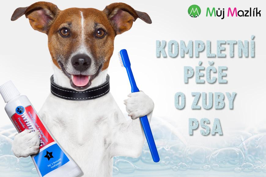 Tak tento kartáček pro čištění našich lidských zubů v e-shopu Mujmazlik.cz nekoupíte. Zato ten správný kartáček, pastu a další dentální potřeby pro psy ano!