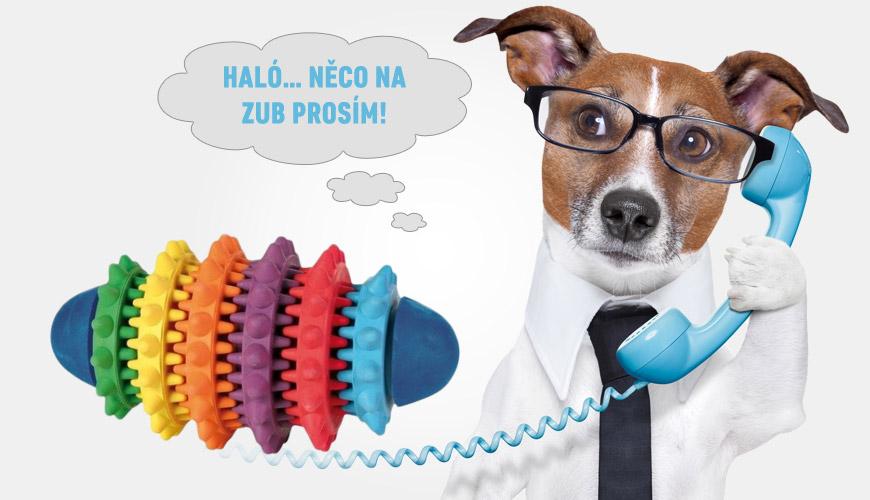 Kvalitní psí hračky pomohou pejskům také s dentální hygienou.