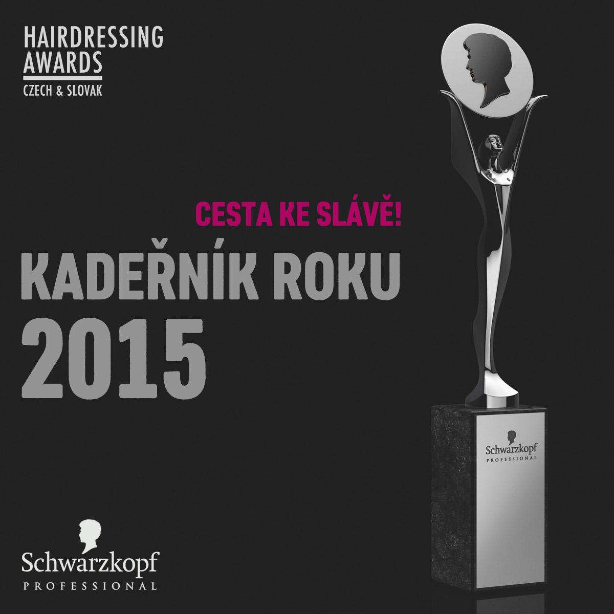 Už jen necelé dva měsíce mají čeští a slovenští kadeřníci na to, aby atakovali nejvyšší titul v kadeřnické branži – titul Kadeřník roku 2015.
