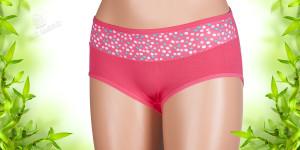 Máte rády pohodlné spodní prádlo? Bambusové kalhotky se hodí na denní nošení i pro sport. Koupíte je v e-shopu Oblecbambus.cz.