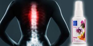 Bolesti zad patří mezi závažné civilizační nemoci. Vyřeší je disciplína i příroda!