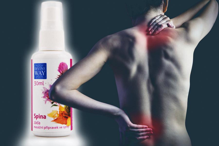 Proti bolesti zad umí pomoci příroda. Přírodní masážní prostředek Spina nastaví správné kapilární proudění, jehož nefunkčnost je nejčastější příčinou bolesti zad.