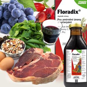 Potraviny bohaté na železo je vhodné doplnit doplňkem stravy s lehce vstřebatelnou formou železa a vitamíny podporujícími vstřebávání železa. Takovým produktem je Floradix.