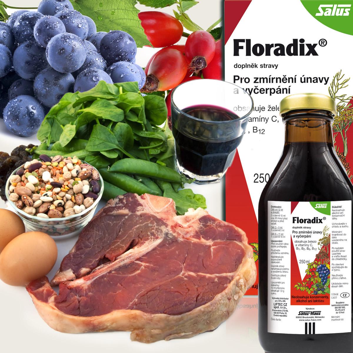 Potraviny bohaté na železo je vhodné doplnit doplňkem stravy s lehce vstřebatelnou formou železa a vitamíny podporujícími vstřebávání železa. Takovým produktem je Floradix. Jeho výhodou je, že je 100% rostlinný a tudíž vhodný i pro vegetariány.