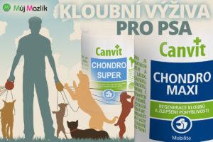 Speciální kloubní výživa pro psa jako doplněk kvalitní stravy je základní péči o pohybový aparát psa.