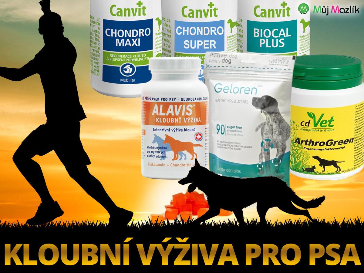 Jako prevence, i jako pomoc při prvních příznacích či přetrvávajících problémech s klouby, je vhodná již zmíněná speciální kloubní výživa pro psa.
