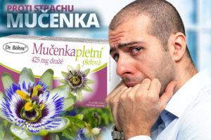 Passiflora incarnata, čili mučenka, má uklidňující účinky bez toho, aniž by způsobovala únavu a ztrátu koncentrace.