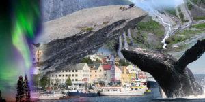 Vydejte se za exotikou na sever. Zájezdy Norsko – to je zážitek z polární záře, jízda na Husky psím spřežení, pravá sauna i velryby.