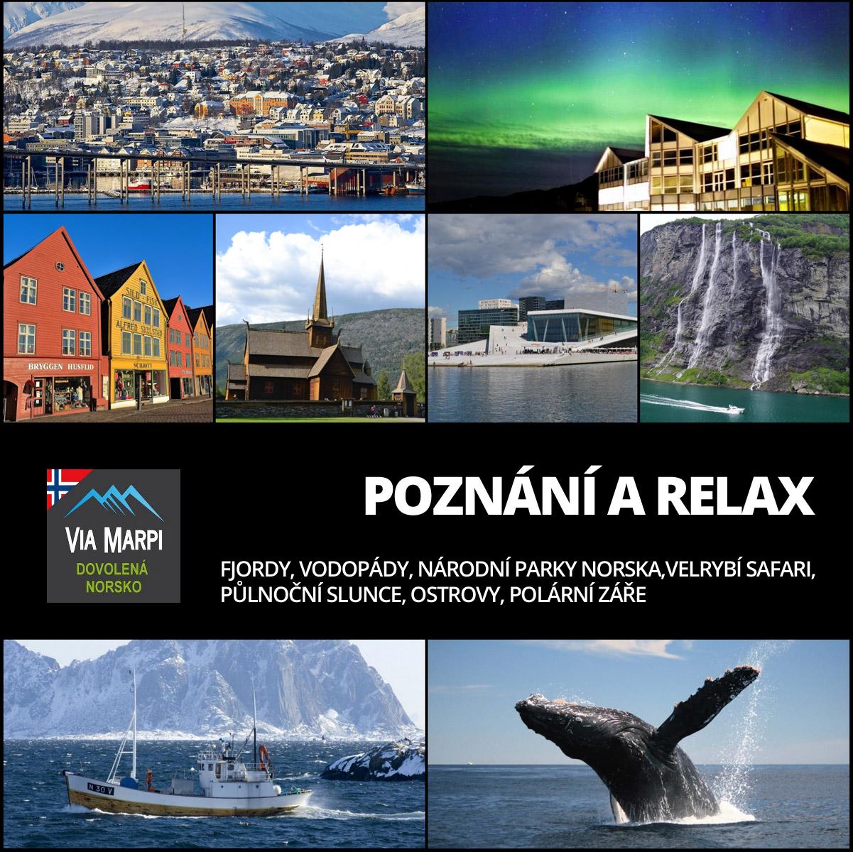 Dovolená Norsko s ViaMarpi – to je zážitek z polární záře, velrybí safari i jízda na psích spřeženích.