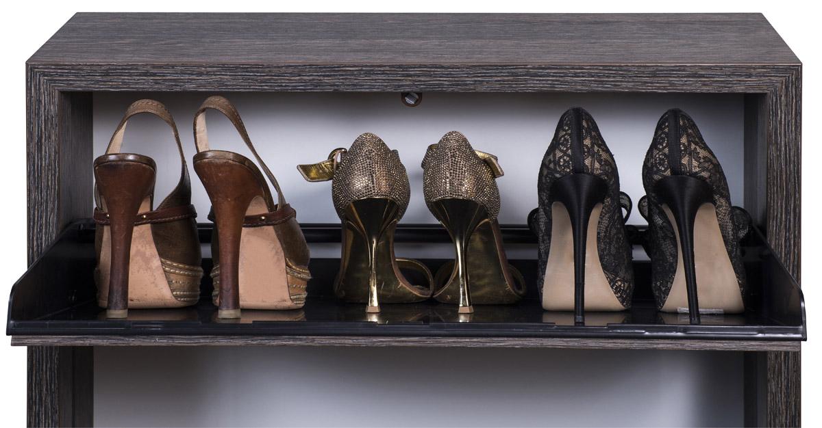 Uklizený byt bez botníku si lze jen stěží představit. Nejenže boty hezky schová, ale dokonce chrání naše nejlepší kousky. Botník je dnes nutnost.