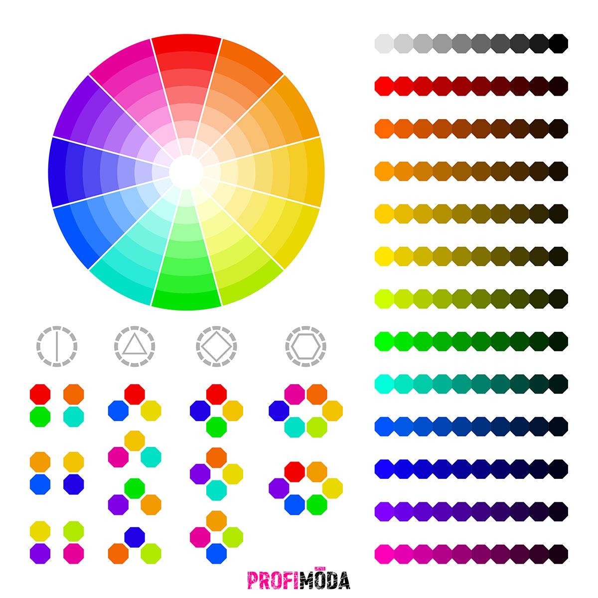 Tento barevný kruh vám pomůže zorientovat se v barvách pro váš interiér.