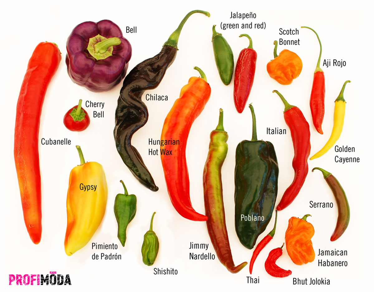 Věděli jste, že chilli papričky podporují tvorbu hormonu štěstí?